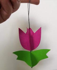 gotowy tulipan